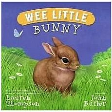 Wee Little Bunny Book